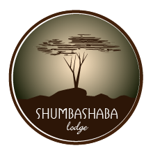 Shumba Shaba Lodge Logo design